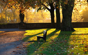 bench, autumn, park, evening