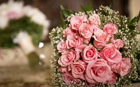Roses, pink, Flowers, bouquet, foliage