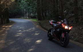 red, Yamaha, motorcycles, road, forest, motorcycle