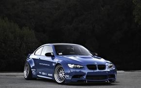 Badi whale, BMW, blue, BMW