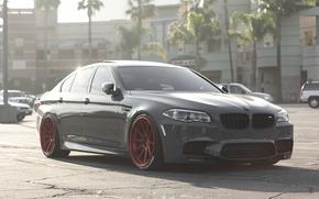 boomer, BMW, BMW, tuning