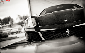 Ferrari, авто, оптика, шильдик, машина