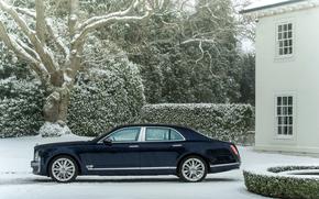 luxury, Other brands, winter, blue, Car, snow, machine, Side view, snowfall, Sedan, building