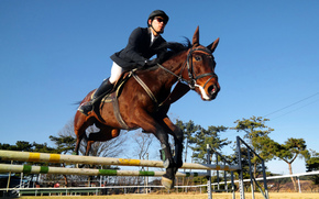 rider, rider, horse, Competitions, horse, overcoming, Equestrian sport, Match, obstacles, Jumping