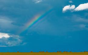 прессованное сено, поле, небо, облака, тюки, радуга