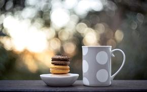mug, cookies, food, cup, sweets, macaroon, bokeh
