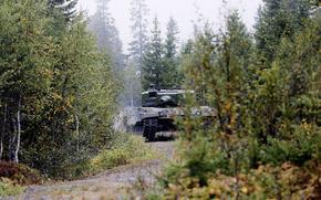танк, лес, боевой, бронетехника