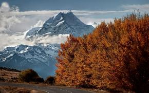 дорога, снег, осень, деревья, вершина, горы