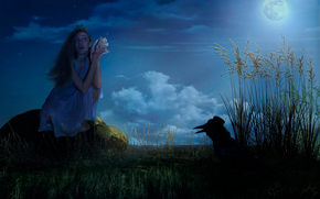 raven, storia, luna, cappello, Stella, ragazza, fantasia, notte