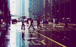 人, 芝加哥, 反射, 建筑, 摩天大楼, 街头, 水坑