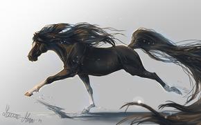 конь, лошадь, арт, хвост, животное, грива, копыта