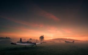 plane, aviation, field, sunset