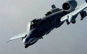 Ripablik, attack plane, Single, Fairchild, twin engine, armored, American