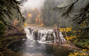bosque, cascada, naturaleza, río, paisaje, otoño