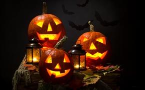 тыква, фонарь, ночь, осень, Хэллоуин, листья, свечи, летучие мыши