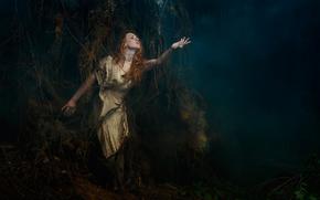 ルーツ, 女の子, 森, 霧, ツリー, アート