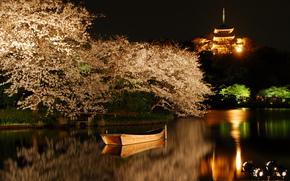 湖, 船, 开花, SPRING, 背光, 樱花, 树, 夜