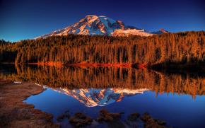 montagna, lago, riflessione, foresta