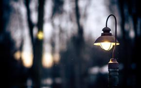 свет, падение, сумерки., снежок, деревья, вечер, фонарь, природа, зима