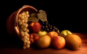 manzanas, naturaleza muerta, duraznos, uvas, peras, fruta