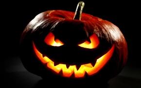 halloween, autunno, zucca, notte