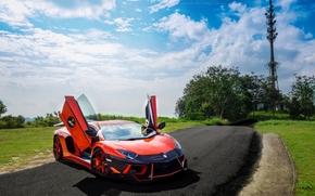 c?u, vista frontal, Lamborghini, Nuvens, gramado, estrada, ?rvores, Aventador, laranja