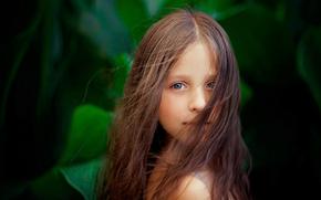 fundo, cabelo, retrato, menina