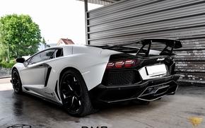 Lamborghini, Car, Zadok