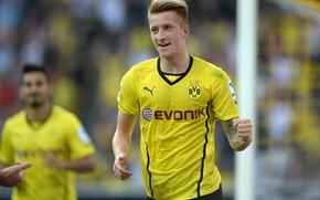 Woody, football, Borussia Dortmund, Royce, Marco, football player, Sport