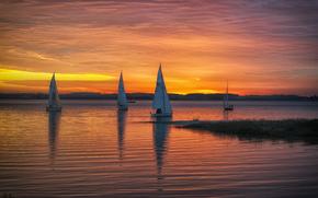 barche a vela, lago, tramonto