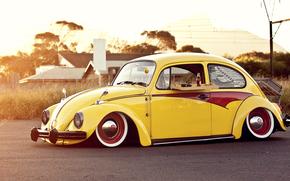 Volkswagen, Volkswagen, SCARABEO, Beatle, cola