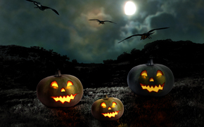full moon, night, Pumpkin, halloween
