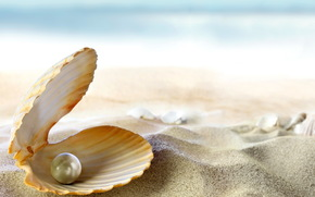 море, пляж, тропики, океан, жемчужина, песок, солнце, ракушка