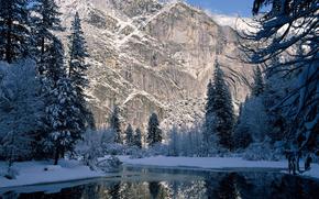 inverno, Montagne, alberi, abete rosso, nevicata, fiume, roccia