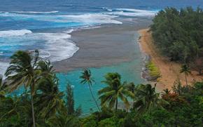 море, пляж, пальмы, берег, вид с верху, пейзаж