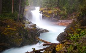 Silver Falls, Mount Rainier National Park, fiume, cascata, paesaggio