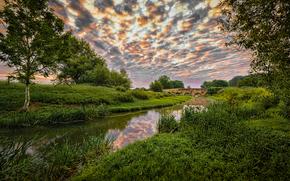 Niewielka rzeka, most, drzew, zachód słońca, krajobraz