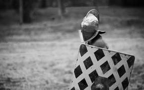 capacete, fundo, guerreiro, Gladiator, escudo, preto e branco