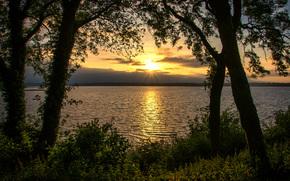 fiume, alberi, fogliame, tramonto, cespuglio, HORIZON, sole, costa