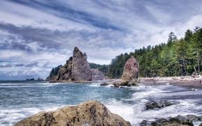 mare, Rocce, alberi, paesaggio