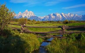 campo, piccolo fiume, torrente, Montagne, paesaggio