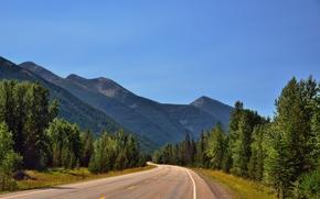 Góry, droga, drzew, krajobraz