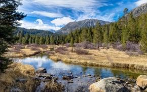 река, горы, деревья, пейзаж