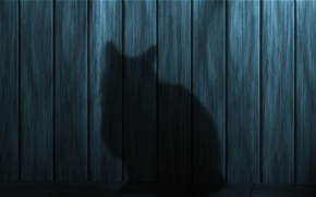 shadow, silhouette, cat, Texture, wall, board, Wooden