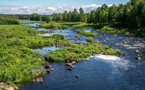 river, trees, stones, landscape