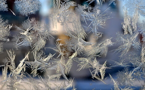 glass, frost, frost on the glass