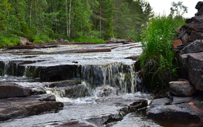 Livas River, Sweden, river, waterfall, trees, nature