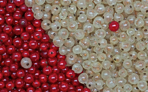 смородина, белая, ягоды, красная