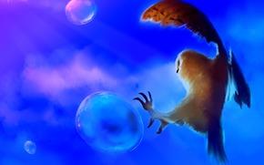 фон, сова, пузыри, птица, арт