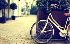 улица, город, растение, велосипед, широкоэкранные, фон, колесо, обои, широкоформатные, разное, корзина, полноэкранные, цветы, корзинка